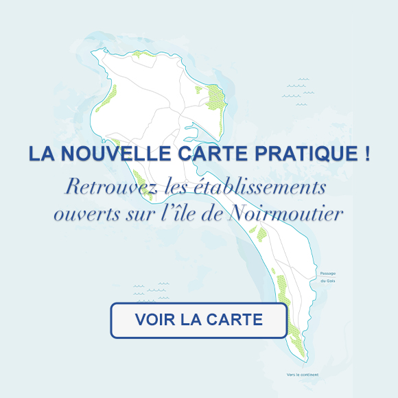 Mobile carte interactive