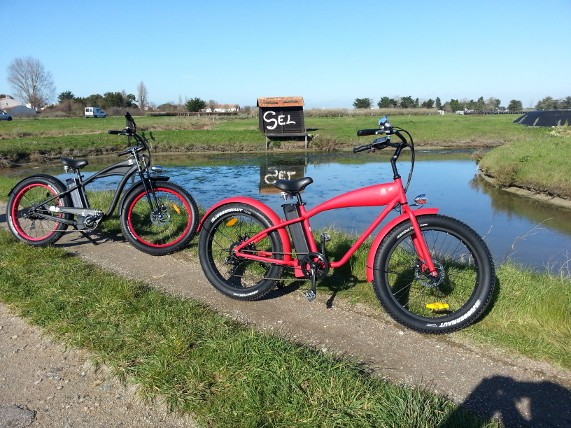 ile-de-noirmoutier-e-bike-no-velo-2019-1-165267