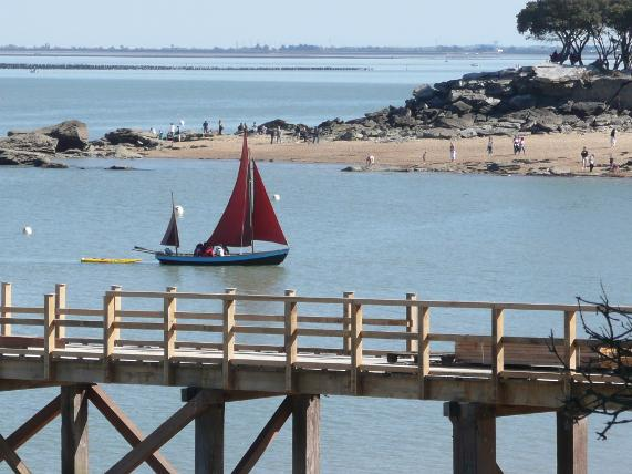 Sailing discovery and Noirmoutier island's environment